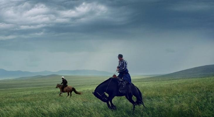 Two people on horseback in an open field