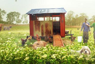 Farm shed with animals and people